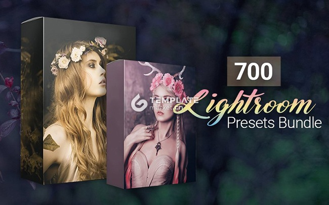 700套惊人的Lightroom图片处理预设文件 700 Amazing Lightroom Presets Bundle